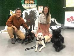 台灣心輔犬團隊培訓流浪犬療育特殊兒童