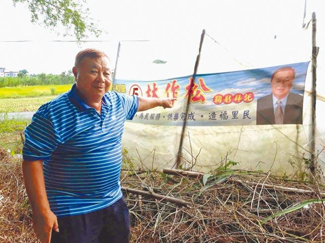 高雄市美濃合和里長林作松贈送競選時期的旗幟給農民,用照片看守果園嚇跑猴子。(林雅惠攝)