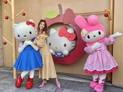 【玩FUN飯】Hello Kitty咖哩飯來囉!卡哇伊讓你捨不得吃下肚