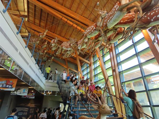 左鎮化石園區去年5月迄今,已吸引超過50萬人次遊客入園。(莊曜聰攝)