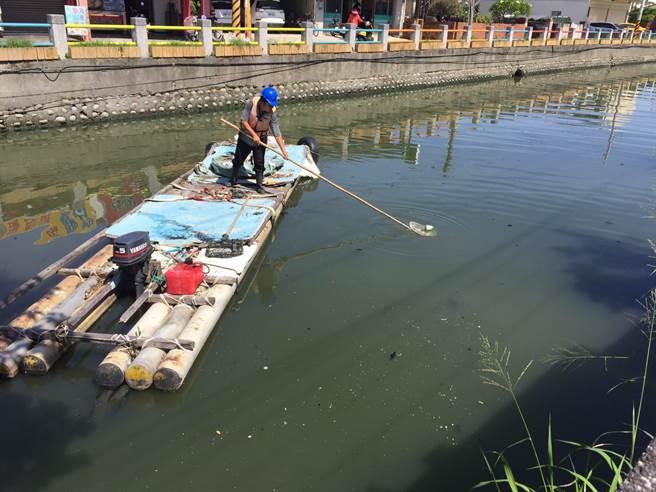 高巿府水利局派員清理水域,維護茄萣大排清潔。(水利局提供)