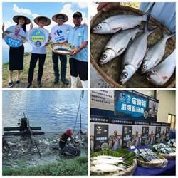 家樂福挺在地漁民 嚴選虱目魚全台開賣