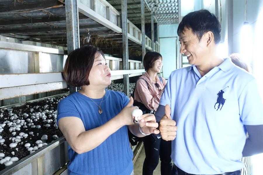 勞動部長許銘春(左)大讚周昭陽農場生產的洋菇。(許素惠攝)