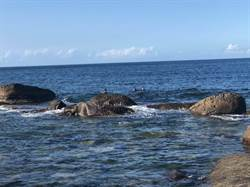 福連國小海域疑有未爆彈   軍方21日一早下水搜尋