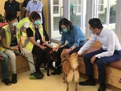 蔡英文總統參觀動保園區認識流浪犬 與貓咪親密互動