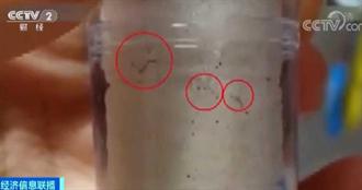 南韓水管「長條蠕蟲」噴出 民眾嚇傻不敢洗澡…超市濾芯銷售狂漲20倍