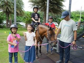 雲林幼兒園推動「馬匹輔助教育」 讓偏鄉教育更多元