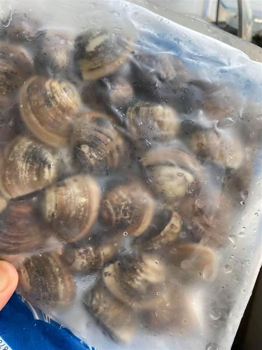 一位民眾表示,自好市多購買的蛤蜊慘遭女兒「冷凍」,讓他哭笑不得,網一見圖片直搖頭:「GG了!」(摘自Costco好市多 商品經驗老實說)