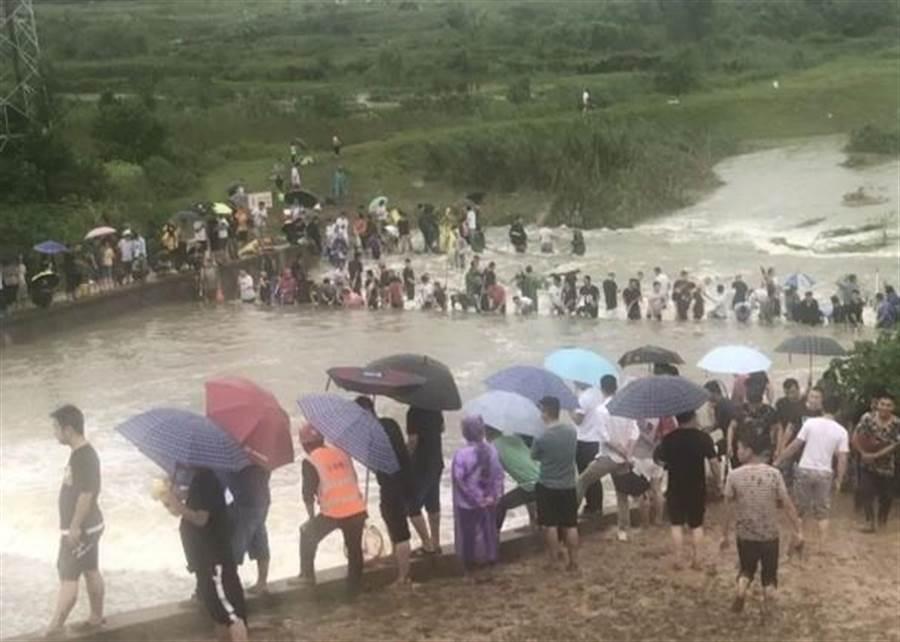 居民進入柏堰湖濕地公園捉魚。(摘自東網)