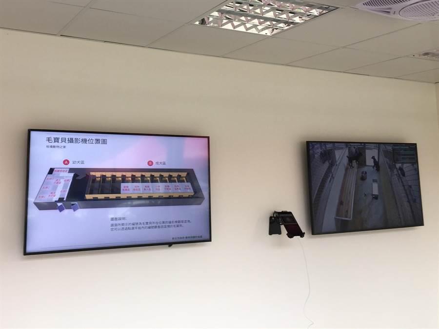 毛寶貝生命教育園區裝置認養即時影像電子看板,方便民眾快速挑選適合家庭的毛寶貝。(新北市動保處提供)