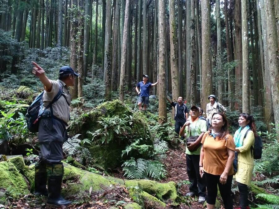 新竹林管處將在南庄鄉加里山舉辦一日護管體驗活動。(新竹林管處提供/謝明俊苗栗傳真)