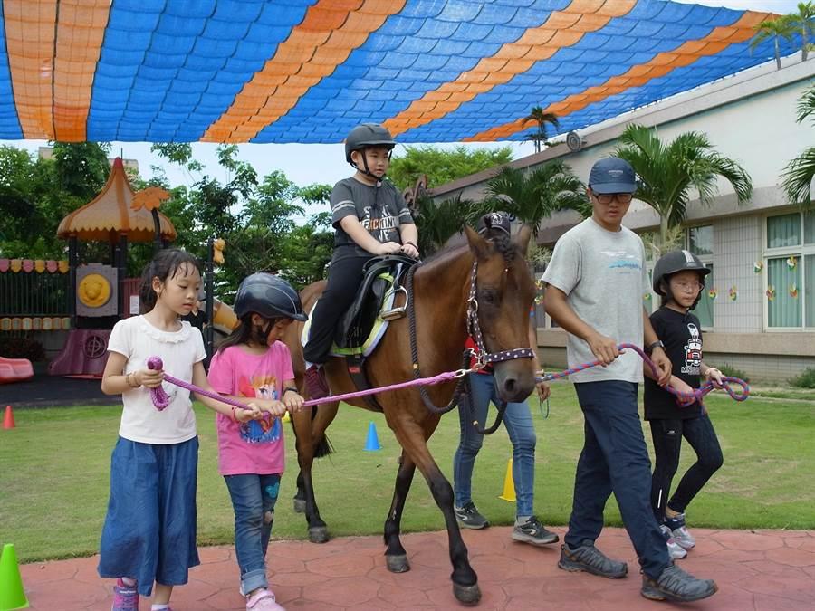 雲林縣麥寮鄉卡爾蕎幼兒園推動「馬匹輔助教育」,讓偏鄉教育更多元。(張朝欣攝)