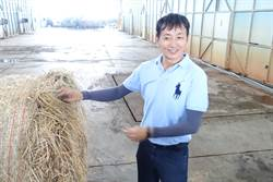 兒子童言要環保 他收稻草月產10噸友善洋菇