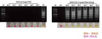 台奈米呼氣檢測新冠病毒智慧口罩 拚上市
