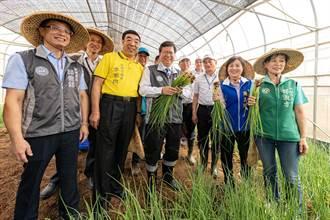 邀集農友來體驗 楊梅台塑農場盼帶動地方發展