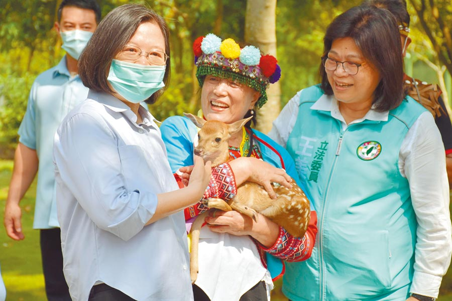 蔡英文總統(左)誇小公鹿好可愛,並命名為「Q弟」,未來Q弟將與「馬小九」一起生活。(呂妍庭攝)