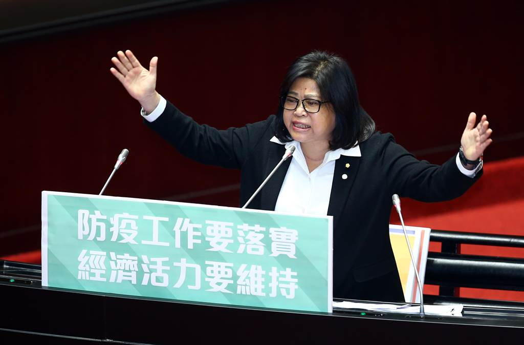 民進黨立委王美惠。 (中時資料照片)