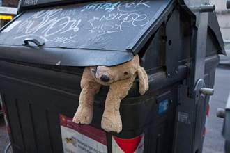 巴西病狗被丟垃圾桶等死…絕望眼神讓人心碎