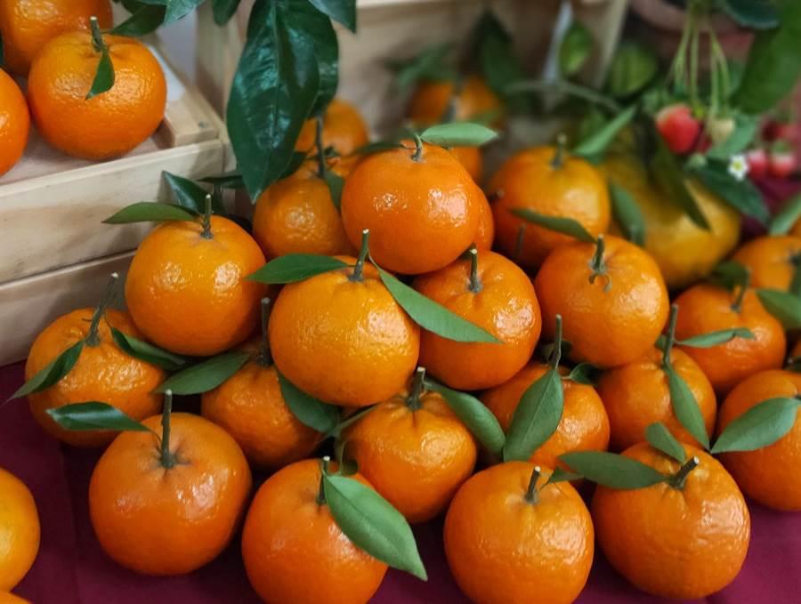 苗栗醫院提醒民眾,水果每天攝取為2至3份,每次攝取量為1個拳頭大小,可增進身體健康。(何冠嫻攝)