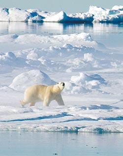 北極圈群島飆21.7度 破41年紀錄