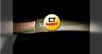 民眾報案「大型掠食動物」逃進公園 警方小心靠近車燈一照笑了