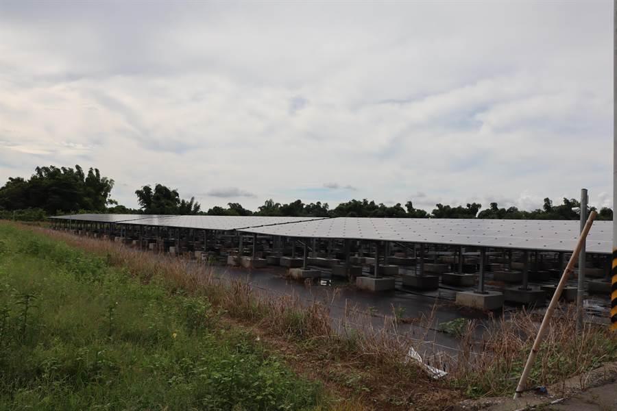 台南官田渡子頭一處農田改種電,去年此處還是一片稻田。(劉秀芬攝)