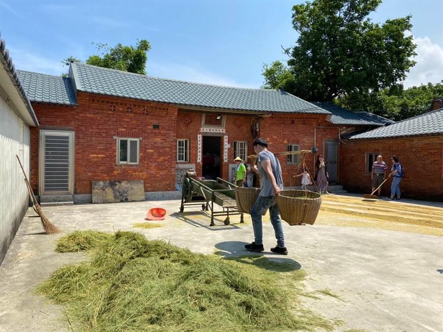 一日農夫體驗 百人農村體驗割稻趣-一日農夫