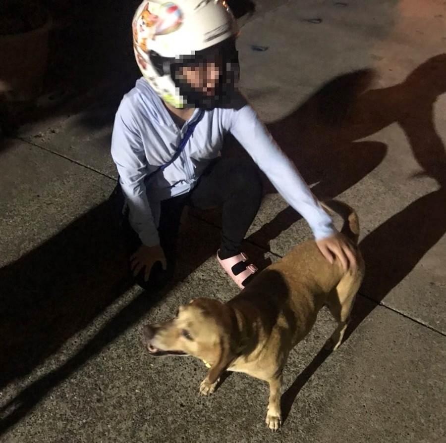 梁姓女子感謝警方幫她找回愛犬「彩虹」。(警方提供/林瑞益高雄傳真)