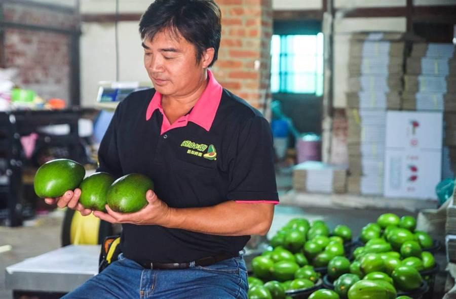 竹崎鄉沈世政種出根系穩扎穩打的健康酪梨,更自創品牌「阿波卡樂酪梨崎園」研發多項酪梨產品。(嘉義縣政府提供/張毓翎嘉義傳真)