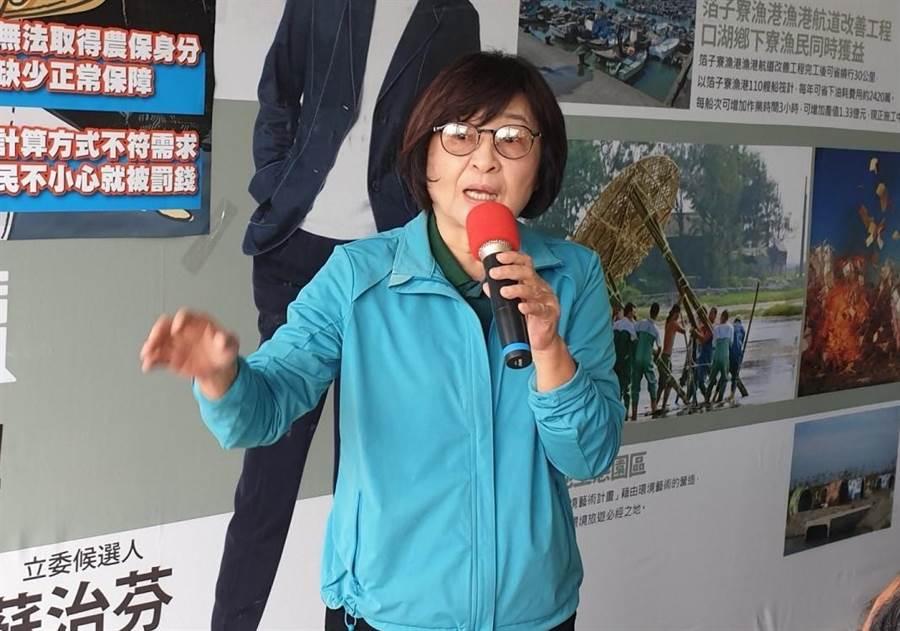 民進黨立委蘇治芬。(資料照片)
