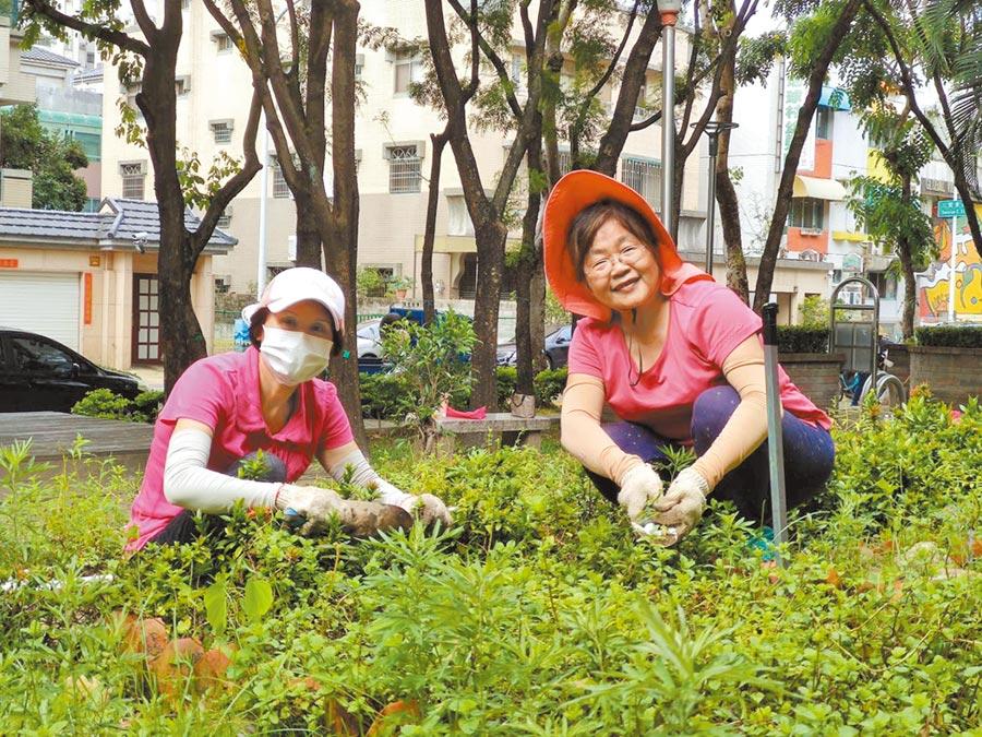 東英社區發展協會一群熱情的里民們組成香草志工行列,大家同心協力,澆灌植物、剷除雜草,打造香草花園。