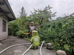 內湖生態園區虎頭蜂攻擊 7人送醫意識清醒