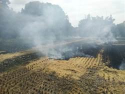 露天燃燒害人又害己 環保局加強巡查依法開罰