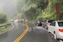 塔塔加成避暑熱點 警方加強取締亂停車