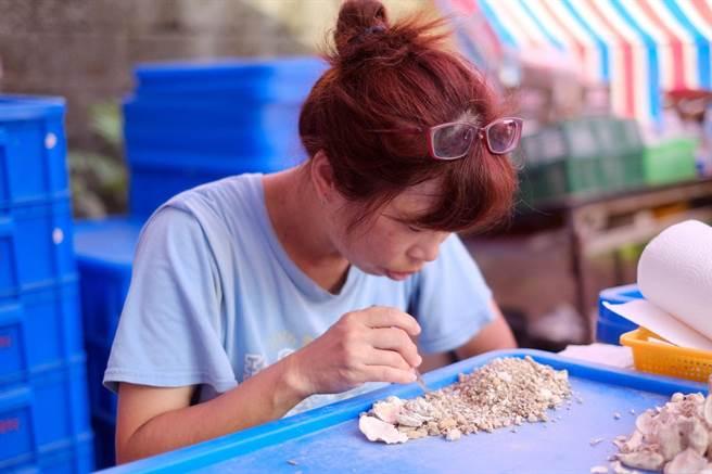 住在和平島的柯鳳琴阿姨表示,自己嫁來基隆和平島好幾年了,從沒想過在家裡旁邊會發現超過4千年的人類歷史。(基隆市文化局提供/吳康瑋基隆傳真)