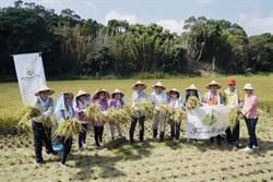 青農創業難 地方組共學團拚特色專案