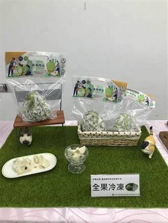 鳳梨釋迦外銷金額破12億 凍果技術突破日韓外銷瓶頸