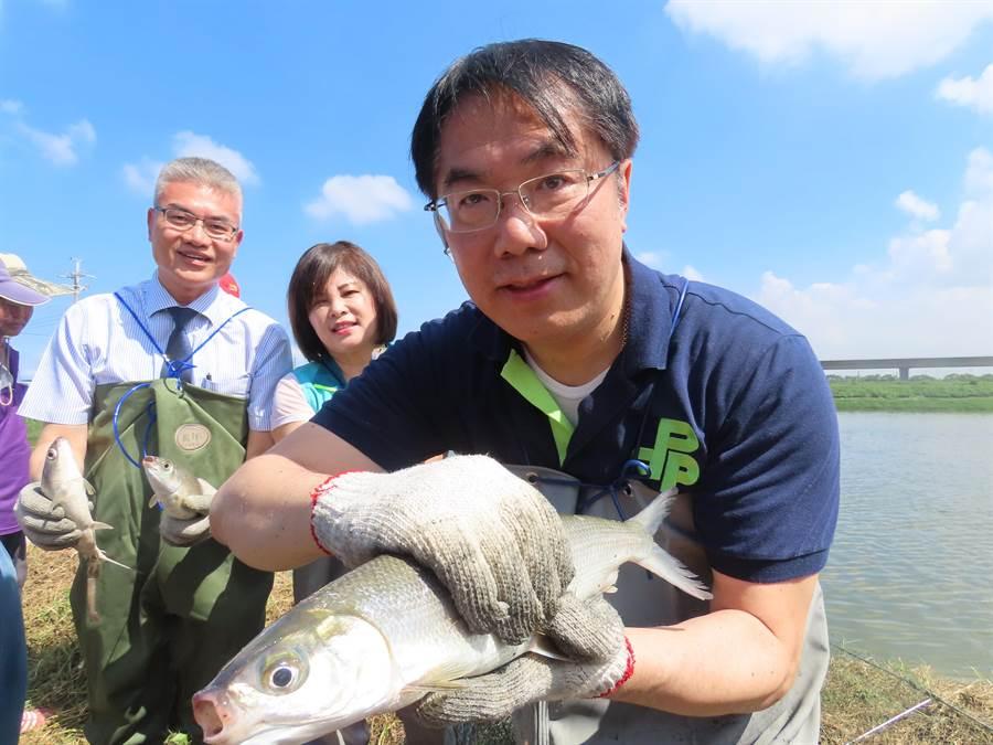 虱目魚產季即將到來,台南市長黃偉哲到產地之一的學甲參訪,也下水捕撈「尚鮮」虱目魚。(莊曜聰攝)