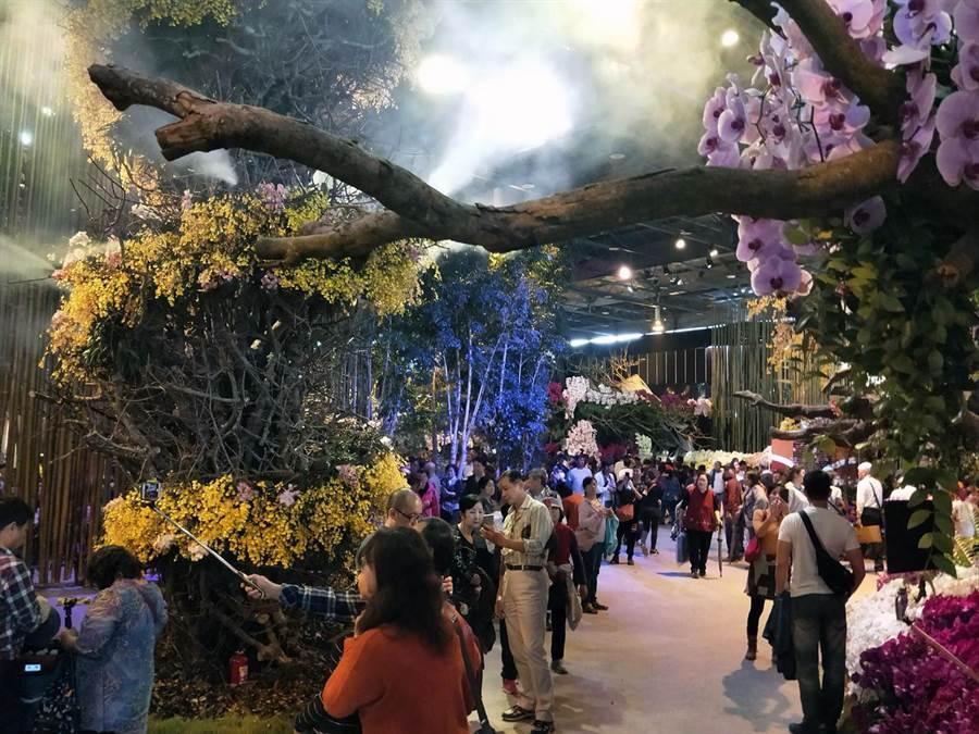 2019年台灣國際蘭展吸引大批參觀人潮。(洪榮志攝)