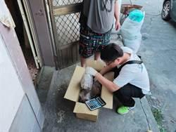 誆稱是「痛風藥」秒被識破 竹崎警查獲超過800包毒咖啡包