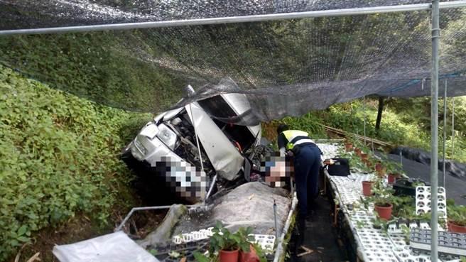 小客车疑似在产业道路下坡时打滑,摔落边坡下的育苗园。(苗栗县消防局提供/巫静婷苗栗传真)
