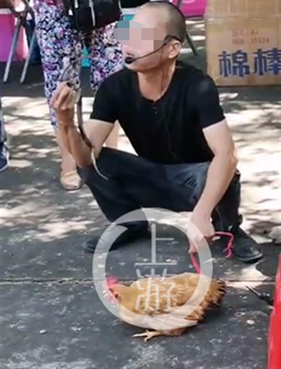 大陸一名男子賣蛇藥示範玩蛇,卻被手中的眼鏡王蛇咬中,當場倒地不治。(網路照片/上游新聞)