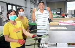鳳梨葉廢物再利用 為農村婦人增加收入