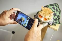 抓拍毛小孩零失誤 Sony公開攝寵物攝影4絕招