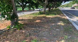 濫用除草劑破壞環境 花蓮環保局查獲首宗違規將重罰