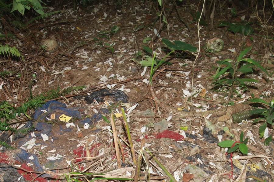 2015年6月10日,警方在花蓮縣吉安鄉白雲山發現的兩具白骨,經法醫研究所檢驗報告為劉志勤、林真米2人,並在骨骸中檢出農藥,研判2人應是服農藥自殺。(中時資料庫)