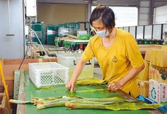農閒時賺外快 葉片碎纖再利用