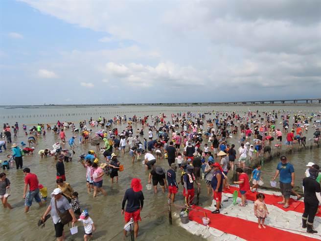 首場摸文蛤活動吸引近5000人參與,8月16日當天還有另外一場。(莊曜聰攝)