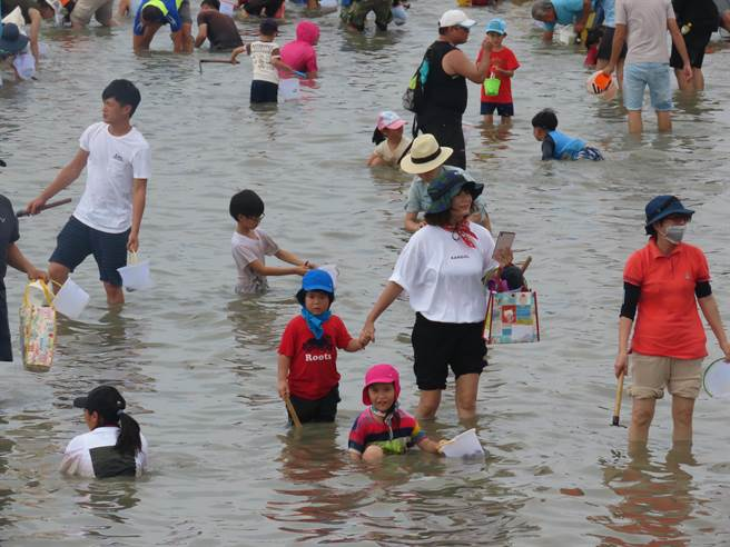 天氣炎熱,親子體驗摸文蛤,小朋友乾脆泡在水中消暑。(莊曜聰攝)