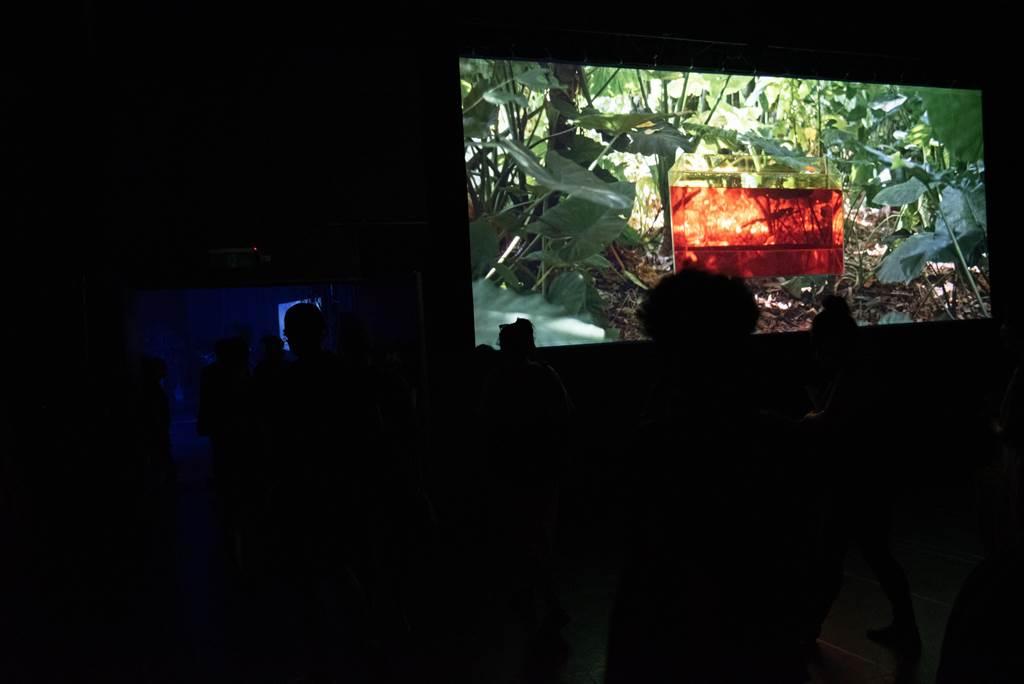 《日月潭是一個水泥盒》作品裡包含裝置、電影、現場音樂演奏,以及觀眾參與。(台北藝術節提供)